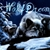 WolfDreams253
