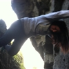 wildcatdish10101