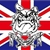 British bulldog 2